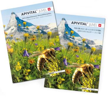 Packagingdesign & Broschüre (Deutsch & Japanisch)